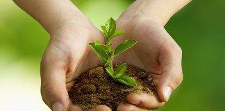 środowisko-słownictwo-angielskie-environment-matura