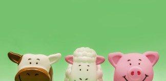 farm-animals-zwierzeta-gospodarskie-słownictwo-angielski