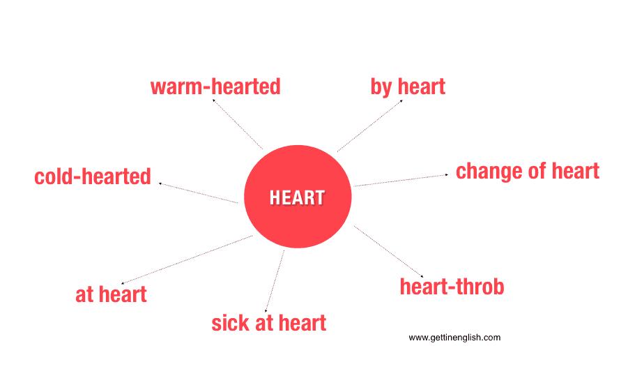 half-hearted-heart-słownictwo-angielski
