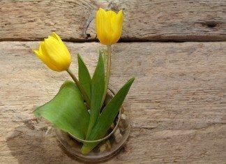 dzień-matki-mothers-day-angielski-artykuł