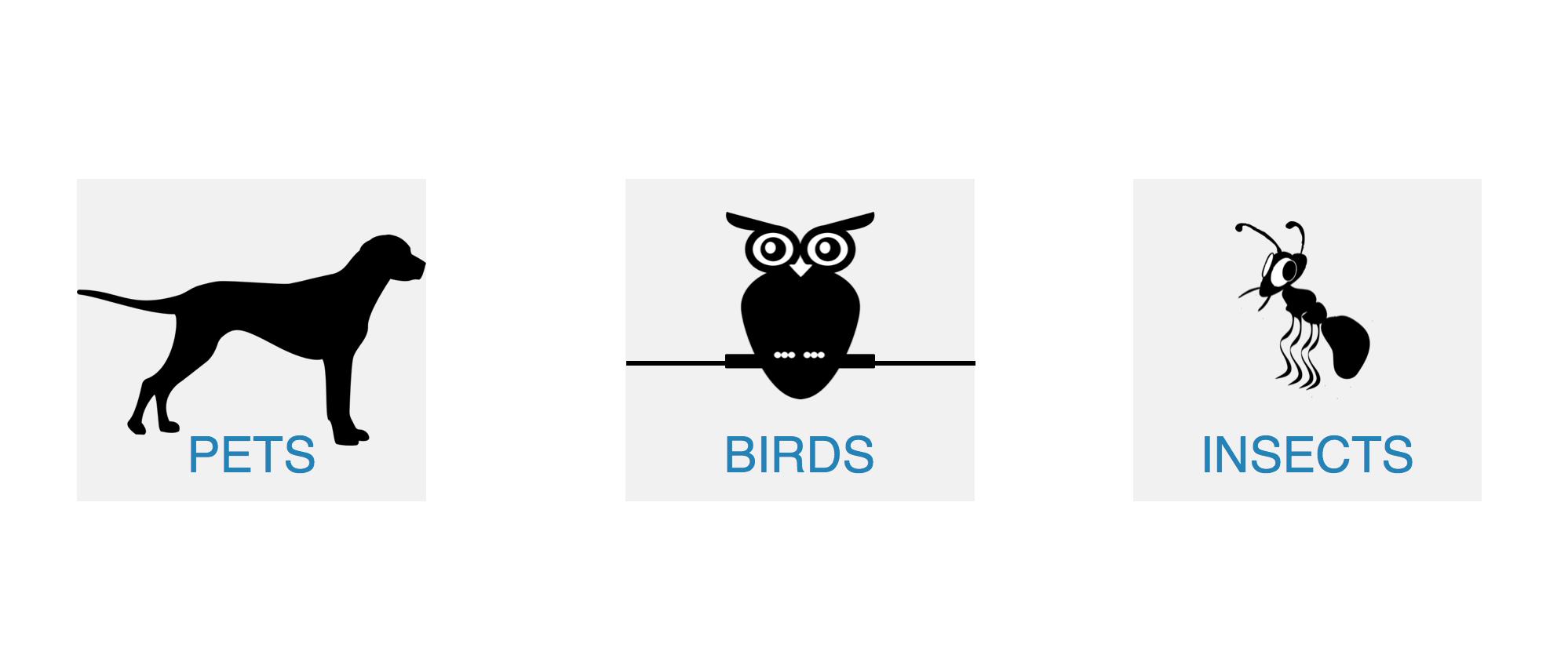 angielskie-idiom-zwierzęta